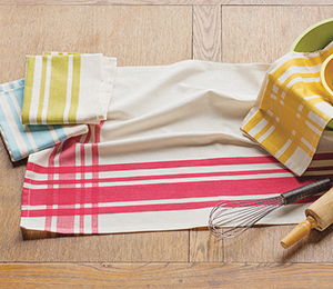 Ecologie Dishtowels